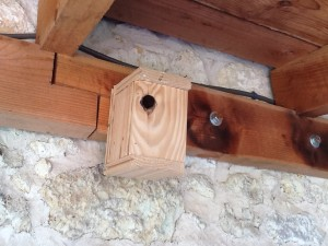 vogelhuis Lagarde Aurignac